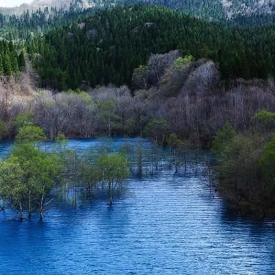 「山の中のダム湖」の写真素材