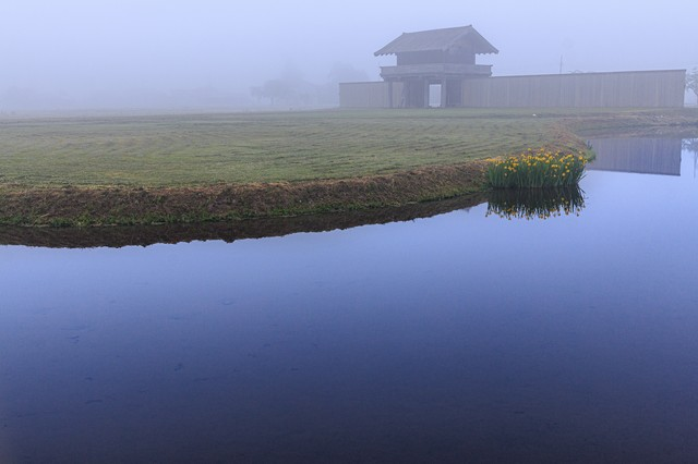 朝霧に包まれる払田の柵(秋田県)の写真