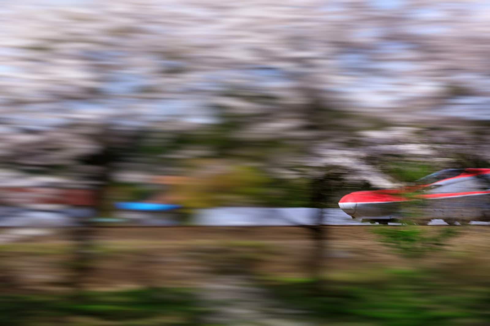 「桜並木沿いを駆け抜ける秋田新幹線(こまち)」の写真