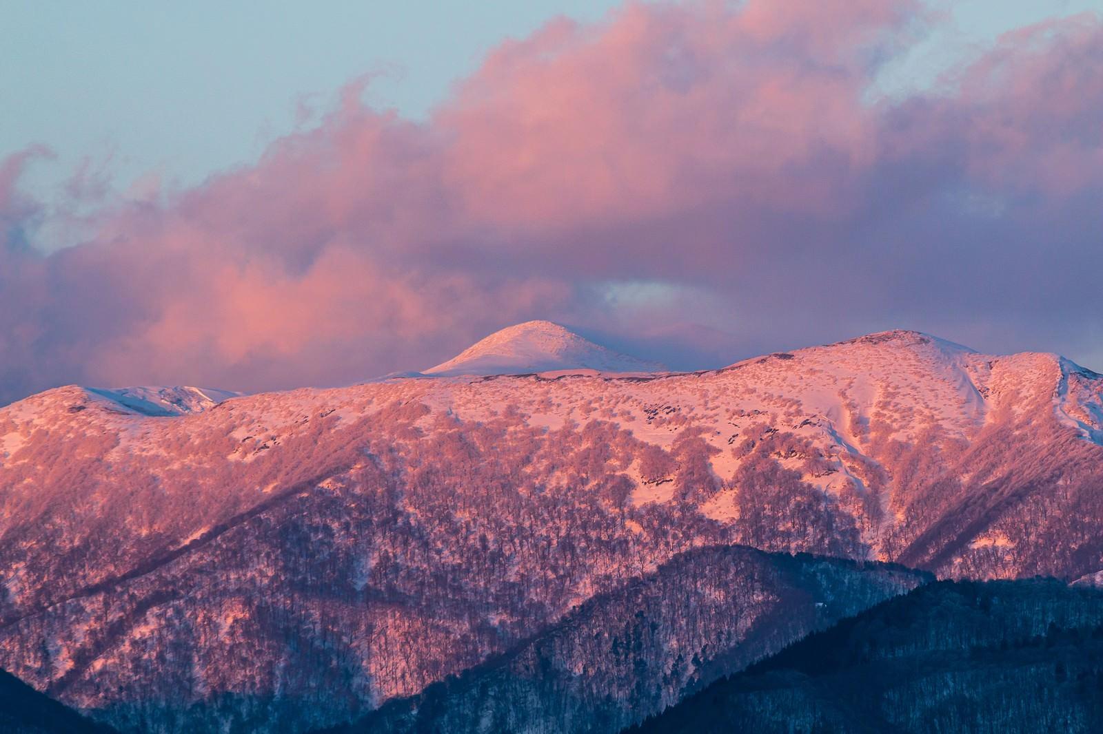 「雪残る秋田駒ケ岳」の写真