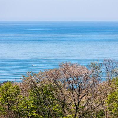 高台から見下ろす静かな海の写真