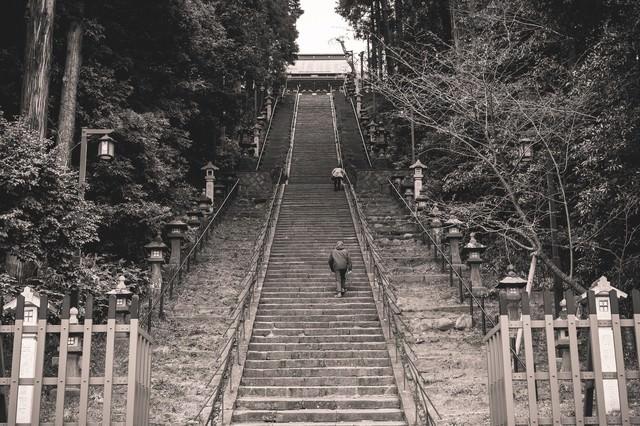 鹽竈神社への階段を上る参拝者(宮城県塩竈市)の写真