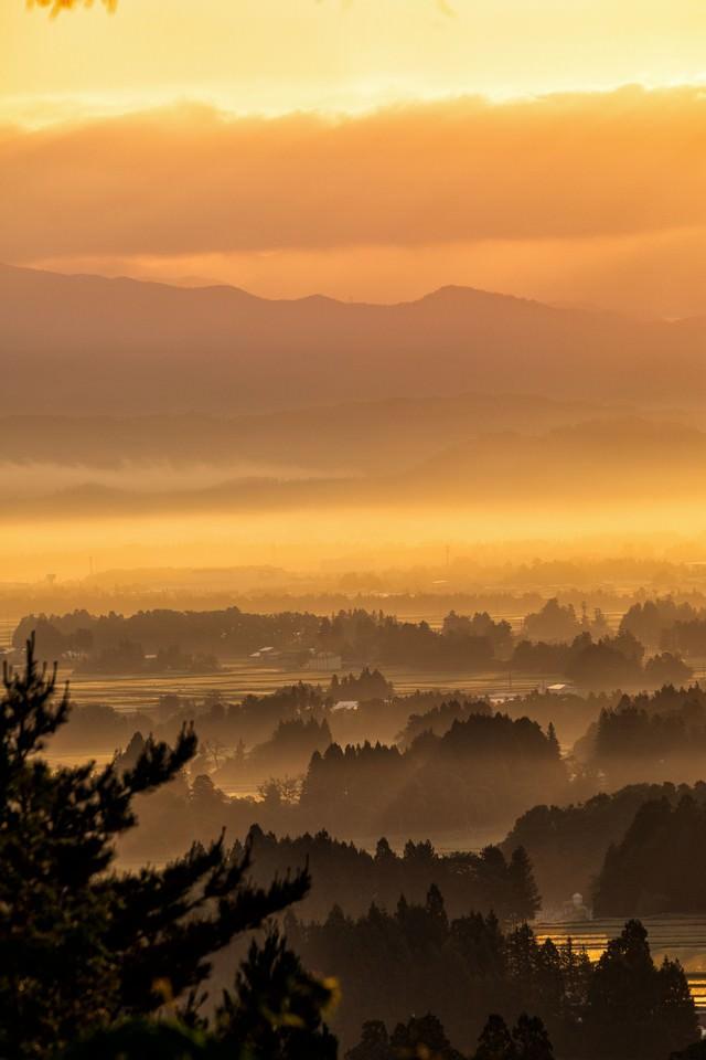 朝日に染まる朝霧残る街並みの写真