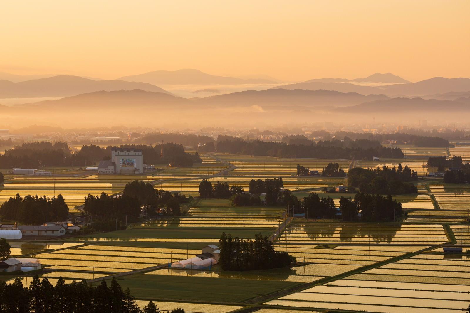 「朝霧残る街並みと田園風景」の写真