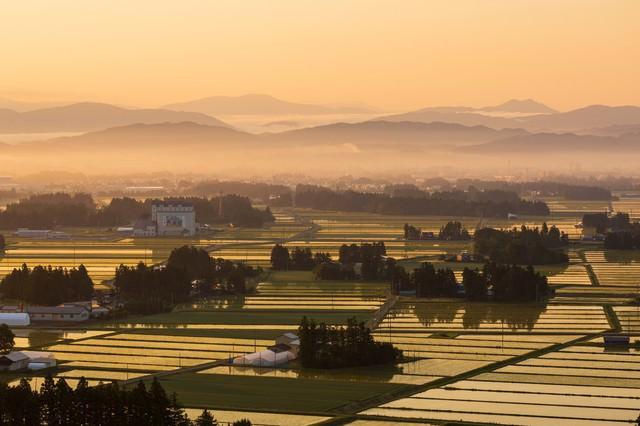 朝霧残る街並みと田園風景の写真