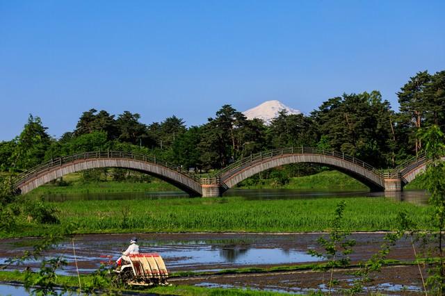 三連の雁がね橋と田植えの写真