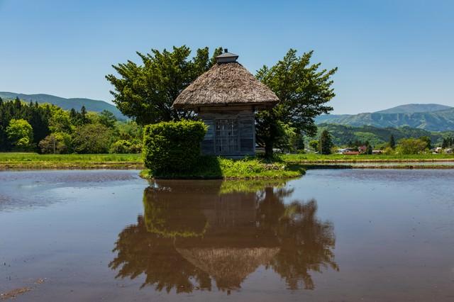 水田に映る荒神神社(遠野市)の写真