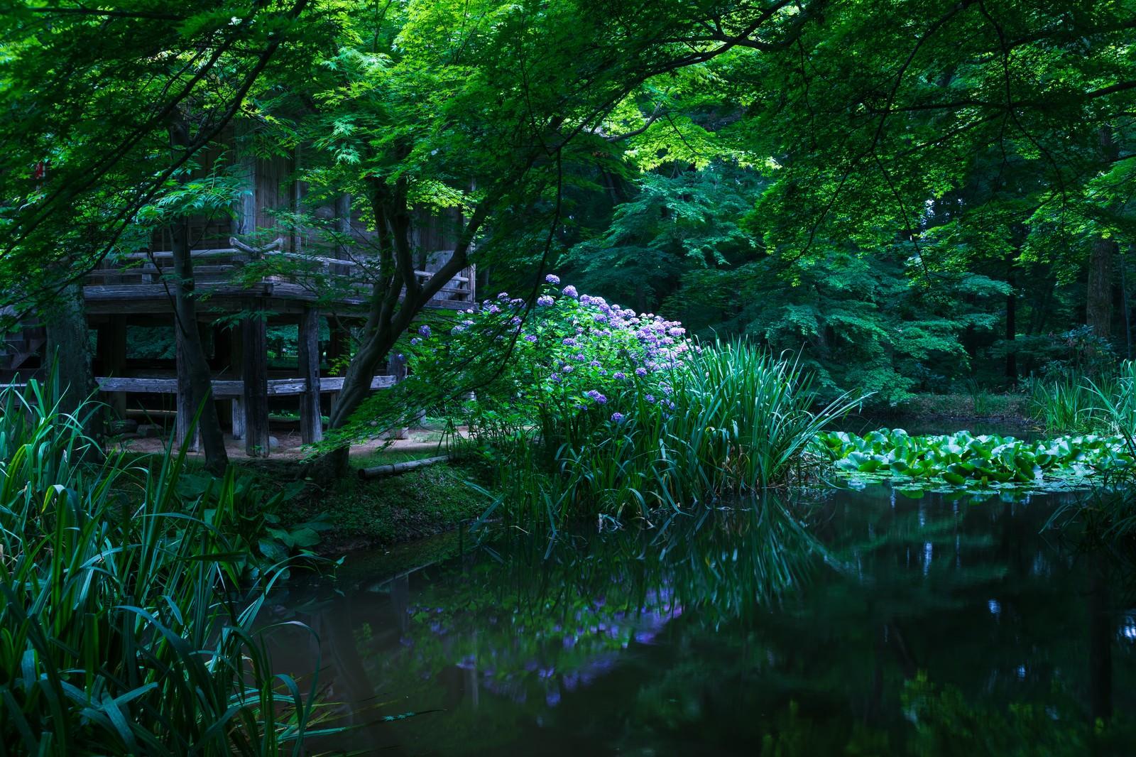 「水鏡に映る中尊寺弁財天堂」の写真