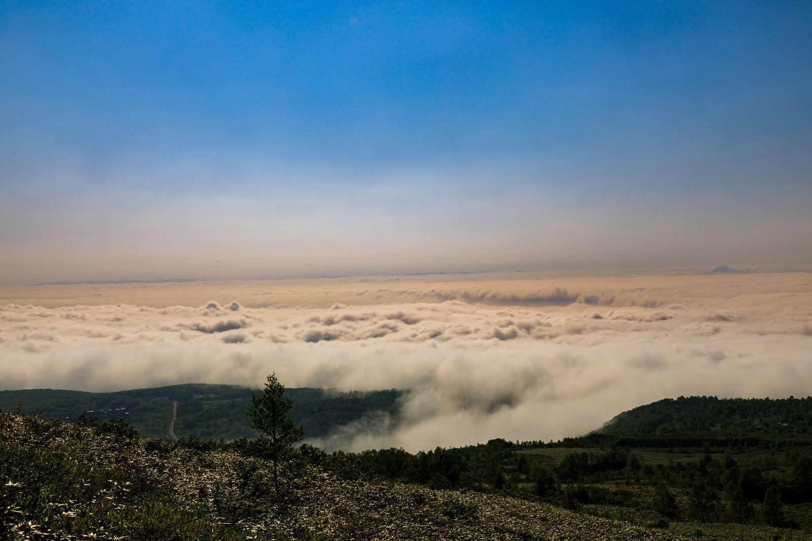 「八幡平と眼下に広がる雲海」の写真