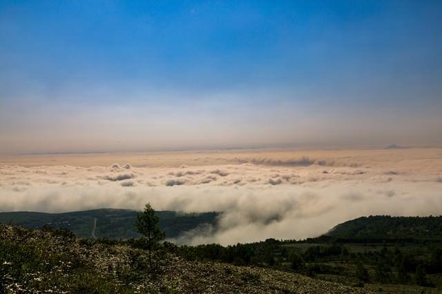 八幡平と眼下に広がる雲海の写真