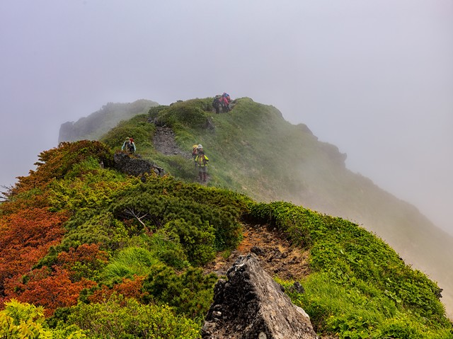 稜線に立ち込める霧と登山者(秋田駒ヶ岳)の写真