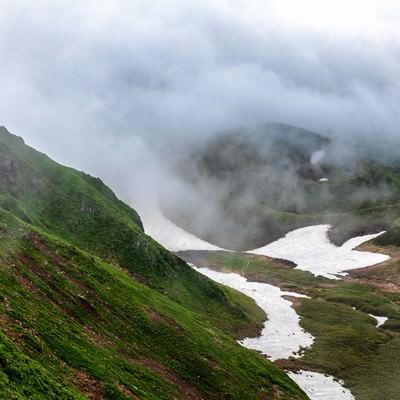 ムーミン谷に立ち込める霧(秋田駒ヶ岳)の写真