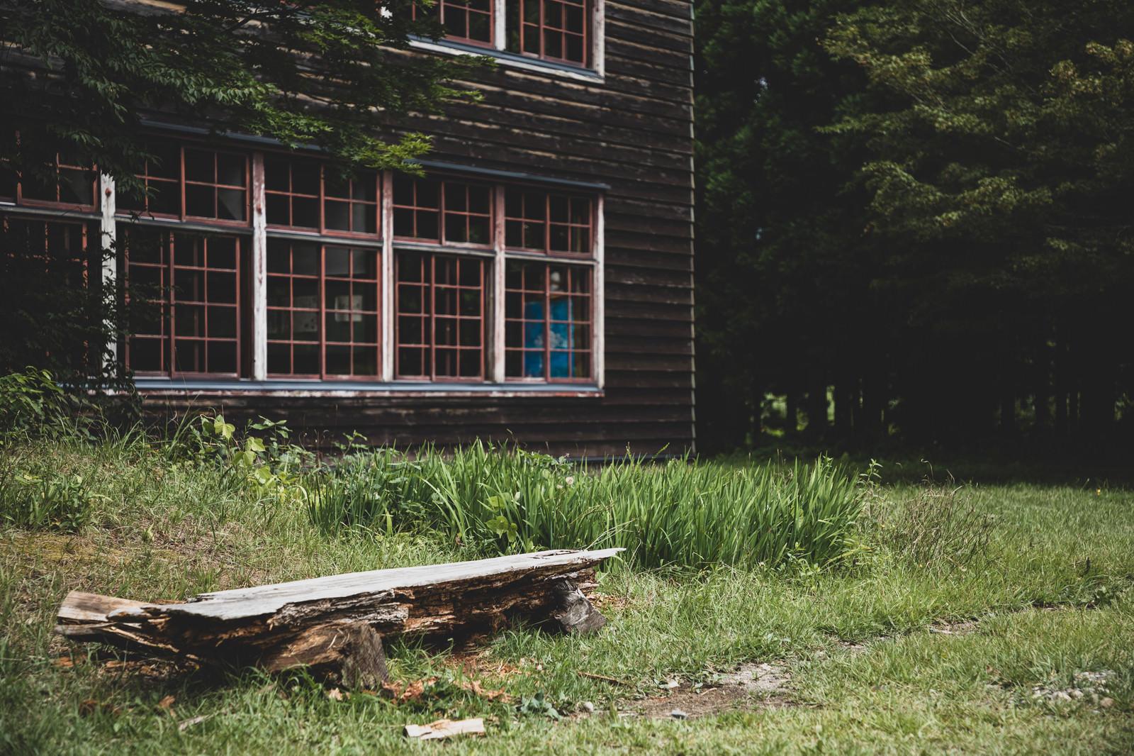 「廃校の一角と朽ち果てた丸太椅子」の写真