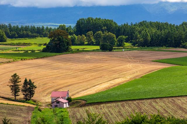 耕された畑と小屋の写真