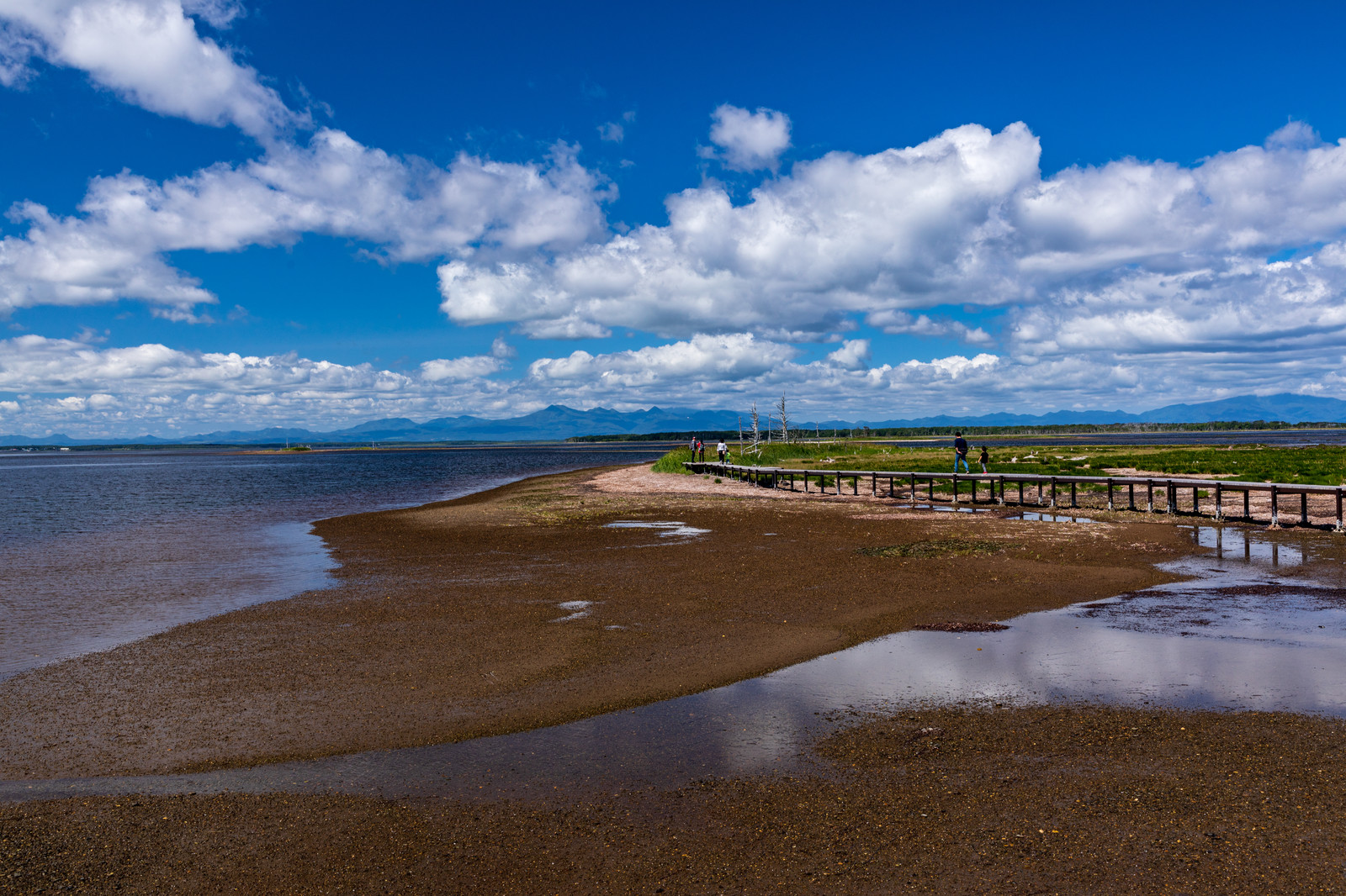 「野付半島の海岸と木道」の写真