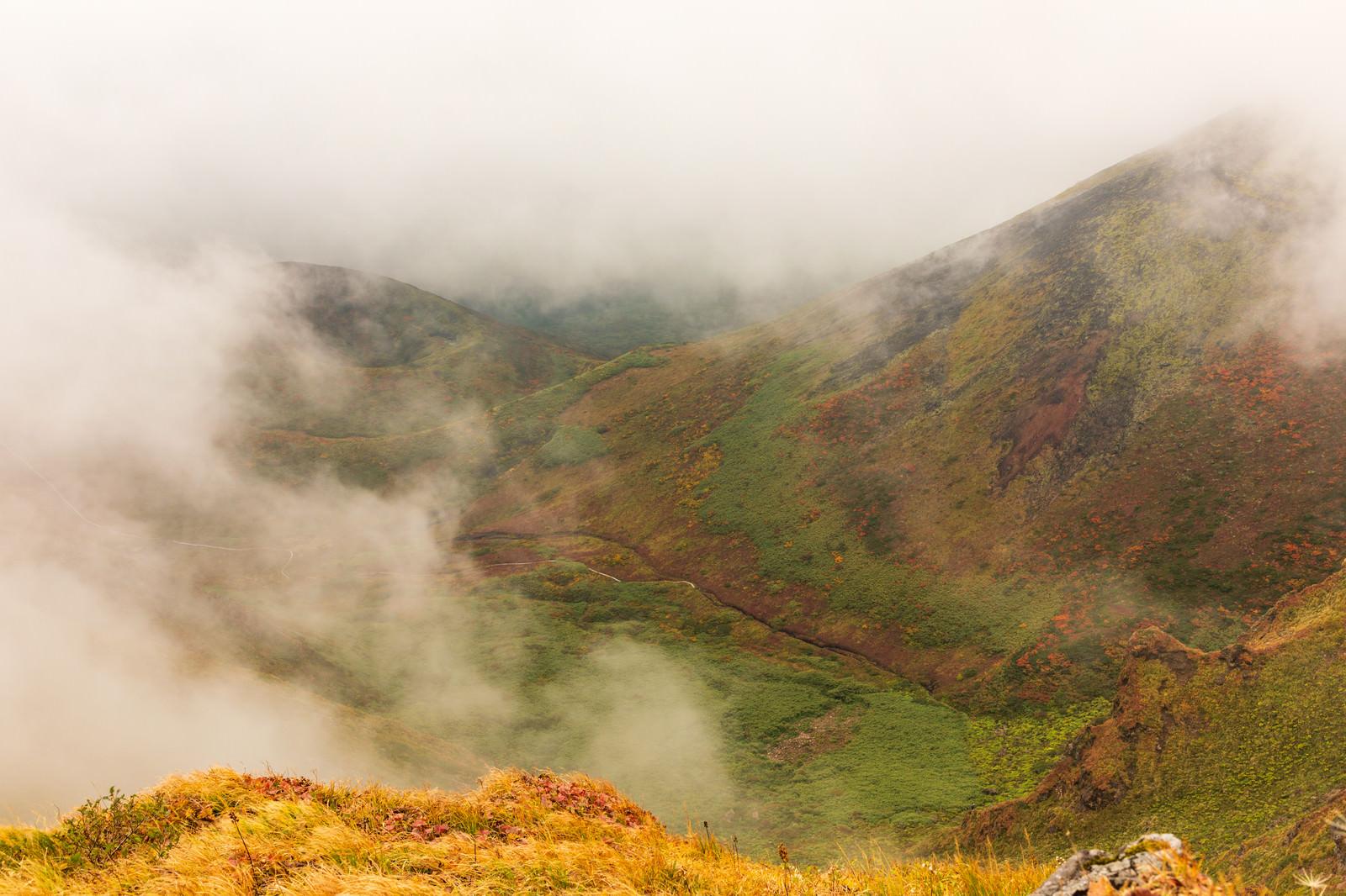 「沸き立つ霧に包まれるムーミン谷(駒ケ岳)」の写真