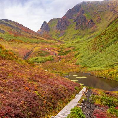 ムーミン谷にある木道の登山道(駒ケ岳)の写真