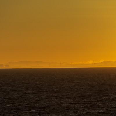 朝靄の中に浮かびあがる風車群の写真