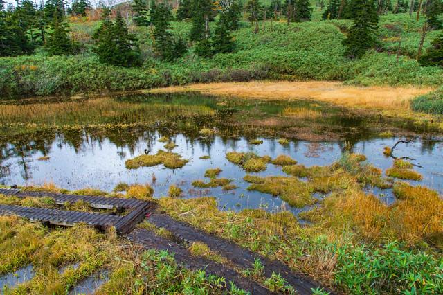 八幡平三ツ石山荘前の湿原の写真