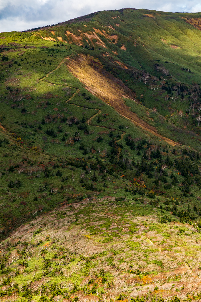 「雲の陰に覆われる急登な登山道」の写真