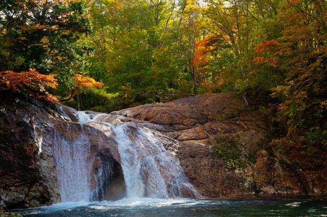 黄葉する木々と赤滝(秋田県雄勝郡東成瀬村)の写真