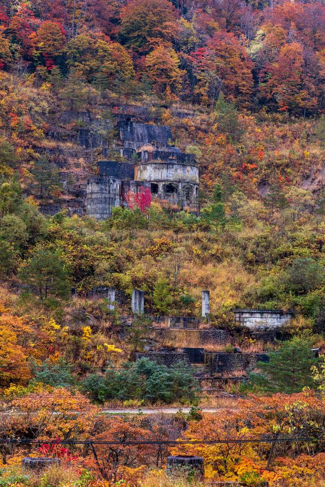 黄葉した山と廃墟(土畑鉱山跡)の写真