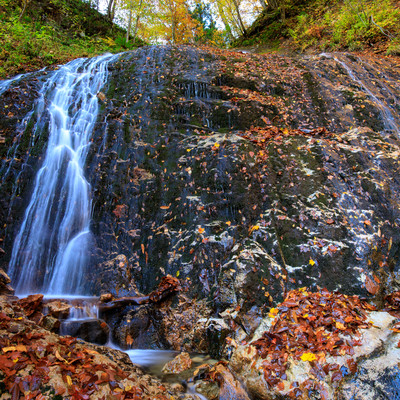 渓流の小さな滝から流れる水と落ち葉の写真