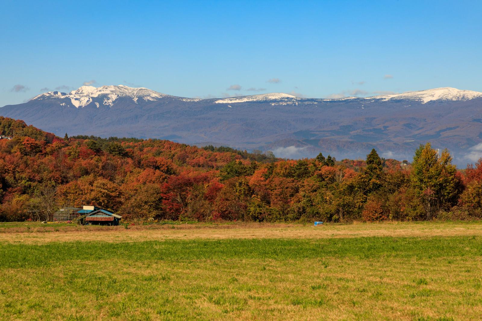 「草原から望む冠雪した八幡平と紅葉した山々」の写真