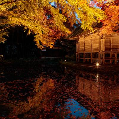 水鏡に映る紅葉と中尊寺弁財天堂の写真