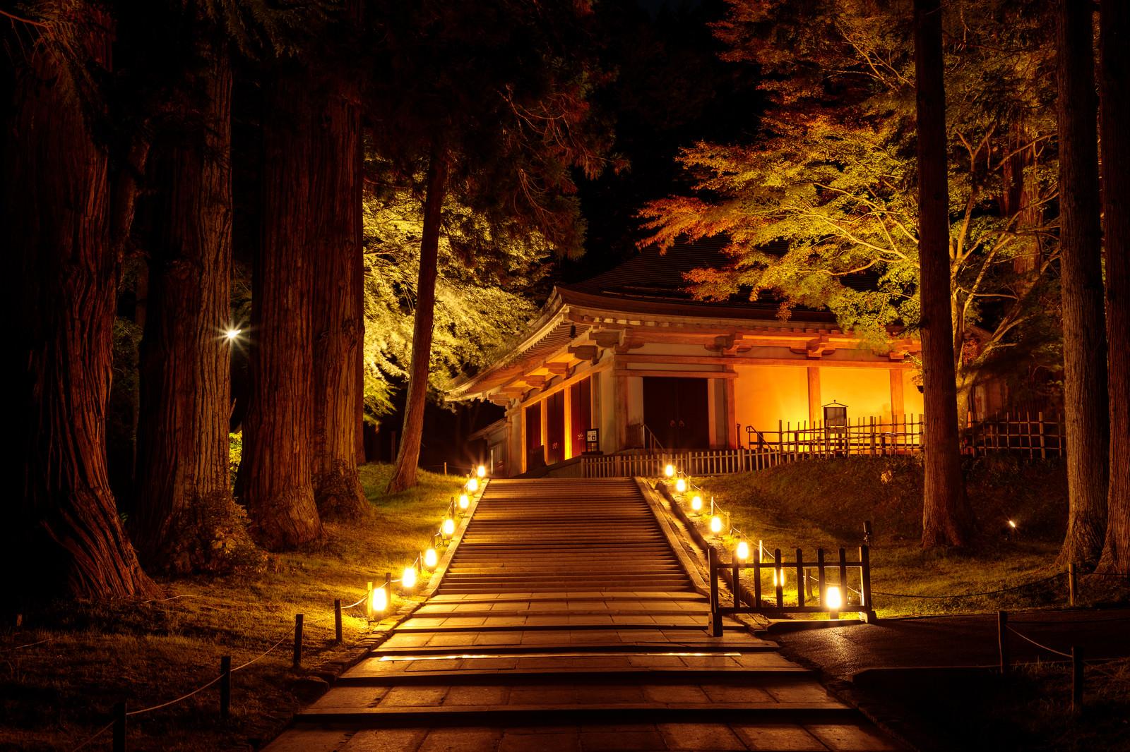 中尊寺金色堂の画像 p1_29