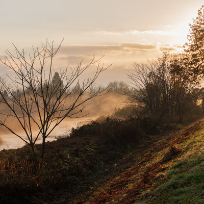 朝焼けに染まる川霧(蒸気霧)の写真