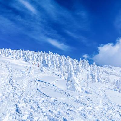 樹氷へ続く足跡の写真