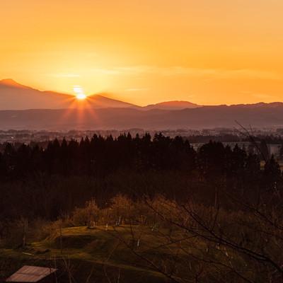 鳥海山の裾野に沈む夕日と林檎畑の写真