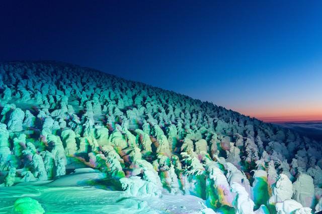 「蔵王の樹氷群」のフリー写真素材