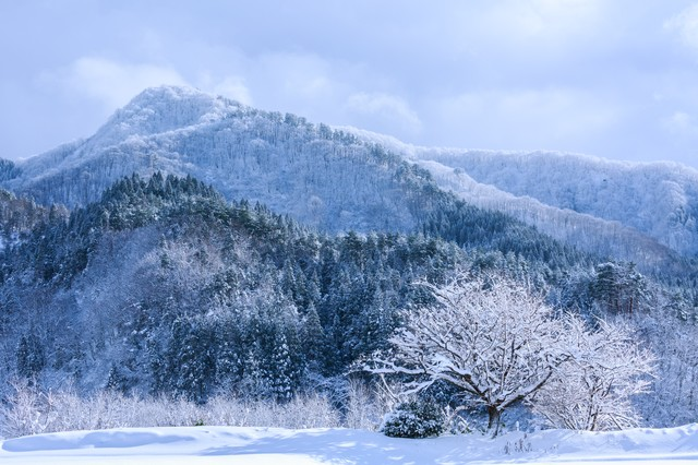 山間の雪景色の写真