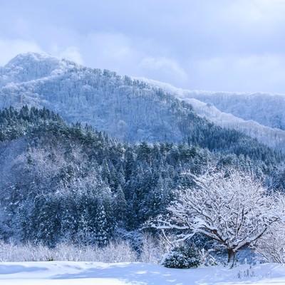 「山間の雪景色」の写真素材