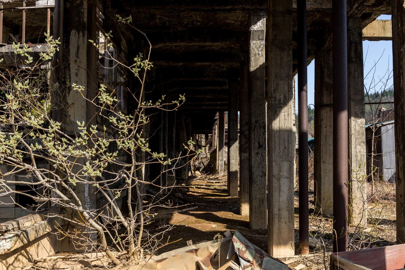 「瓦礫と鉱山跡」の写真
