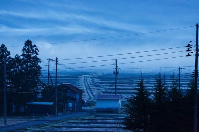 田舎の朝靄の写真