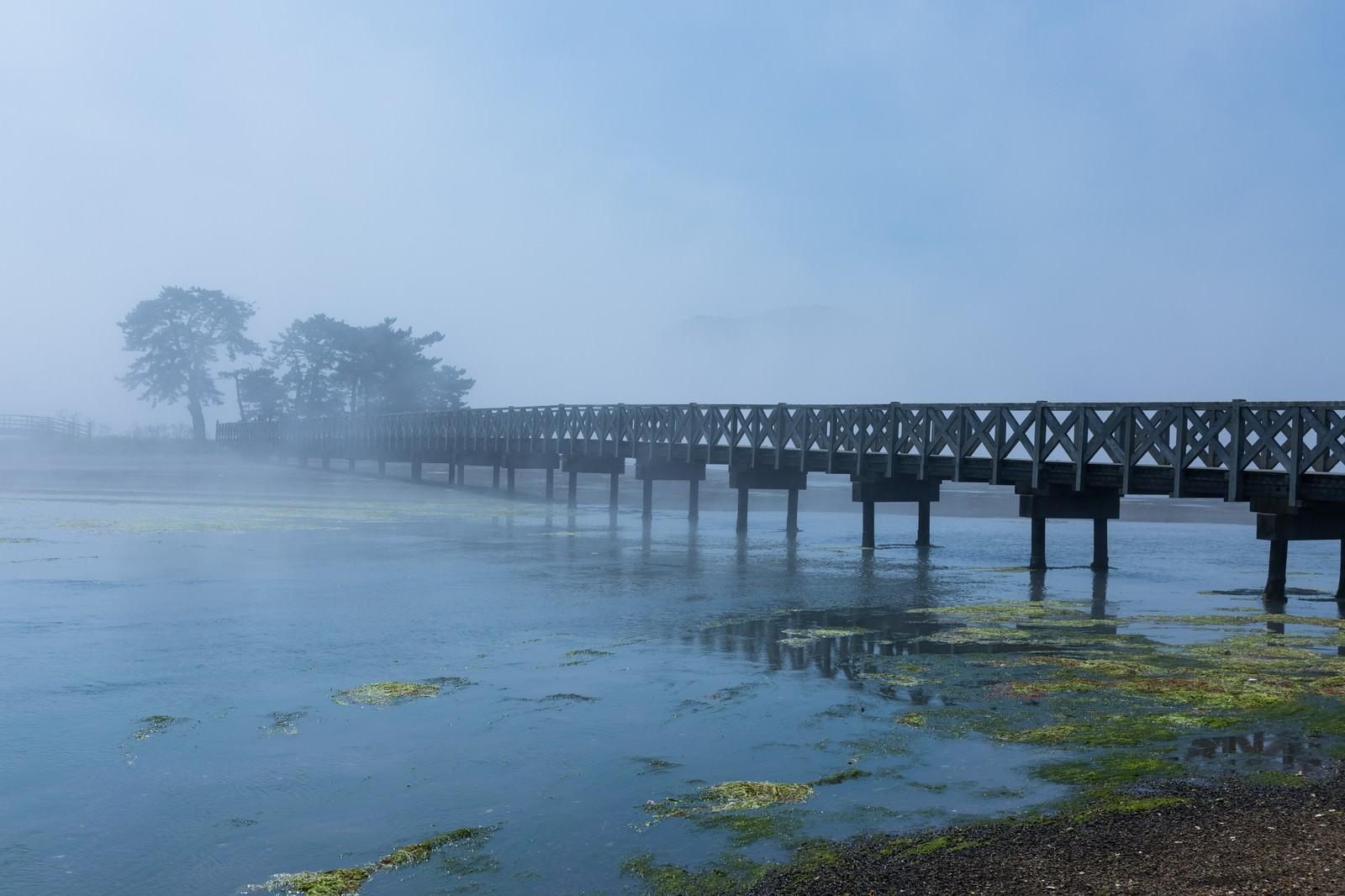 「海霧に包まれる渡り橋」の写真
