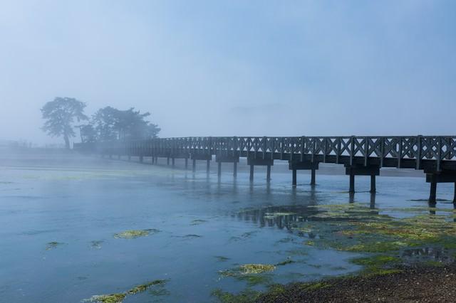 海霧に包まれる渡り橋の写真