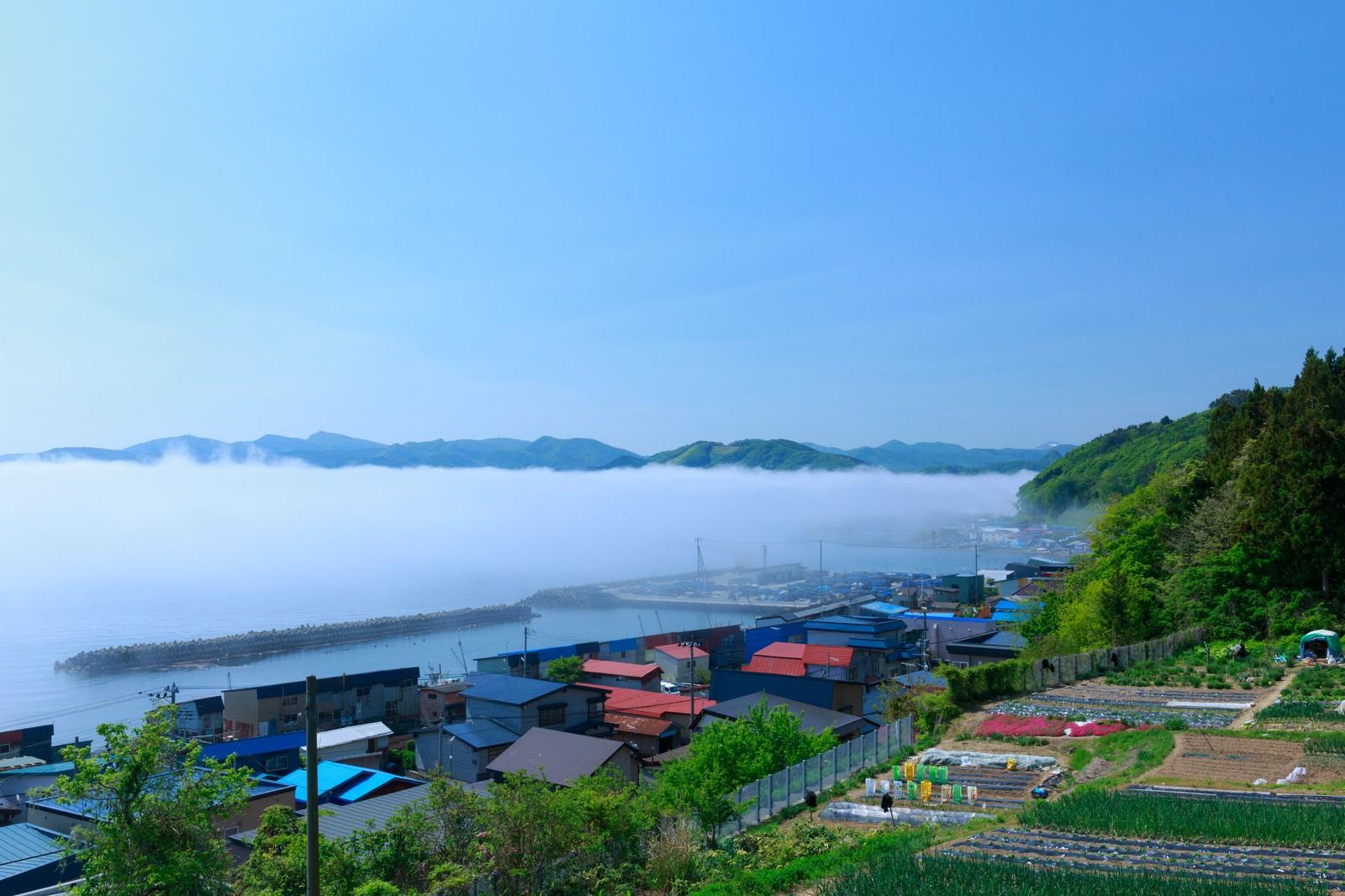 「海霧に包まれる漁村」の写真
