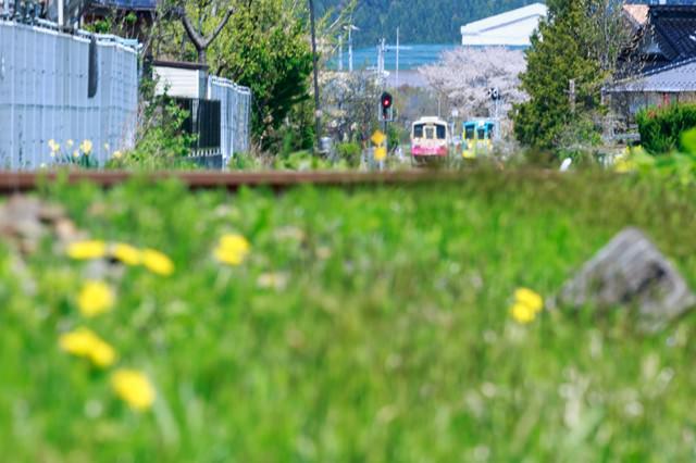 春の訪れと由利高原鉄道の写真