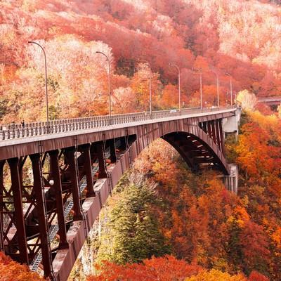 「城ヶ倉大橋と紅葉」の写真素材