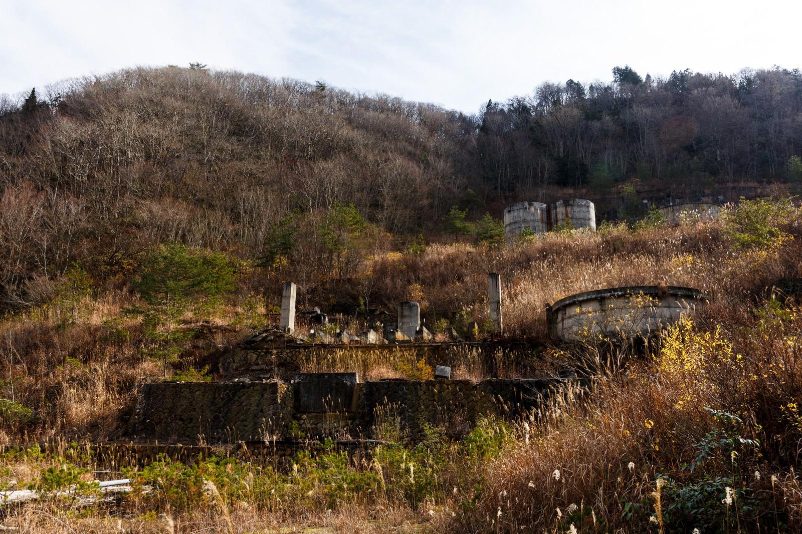 「荒れ果てた土畑鉱山跡」の写真