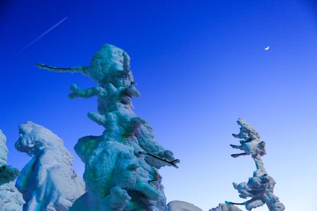 蔵王の樹氷と月の写真