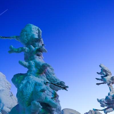 「蔵王の樹氷と月」の写真素材