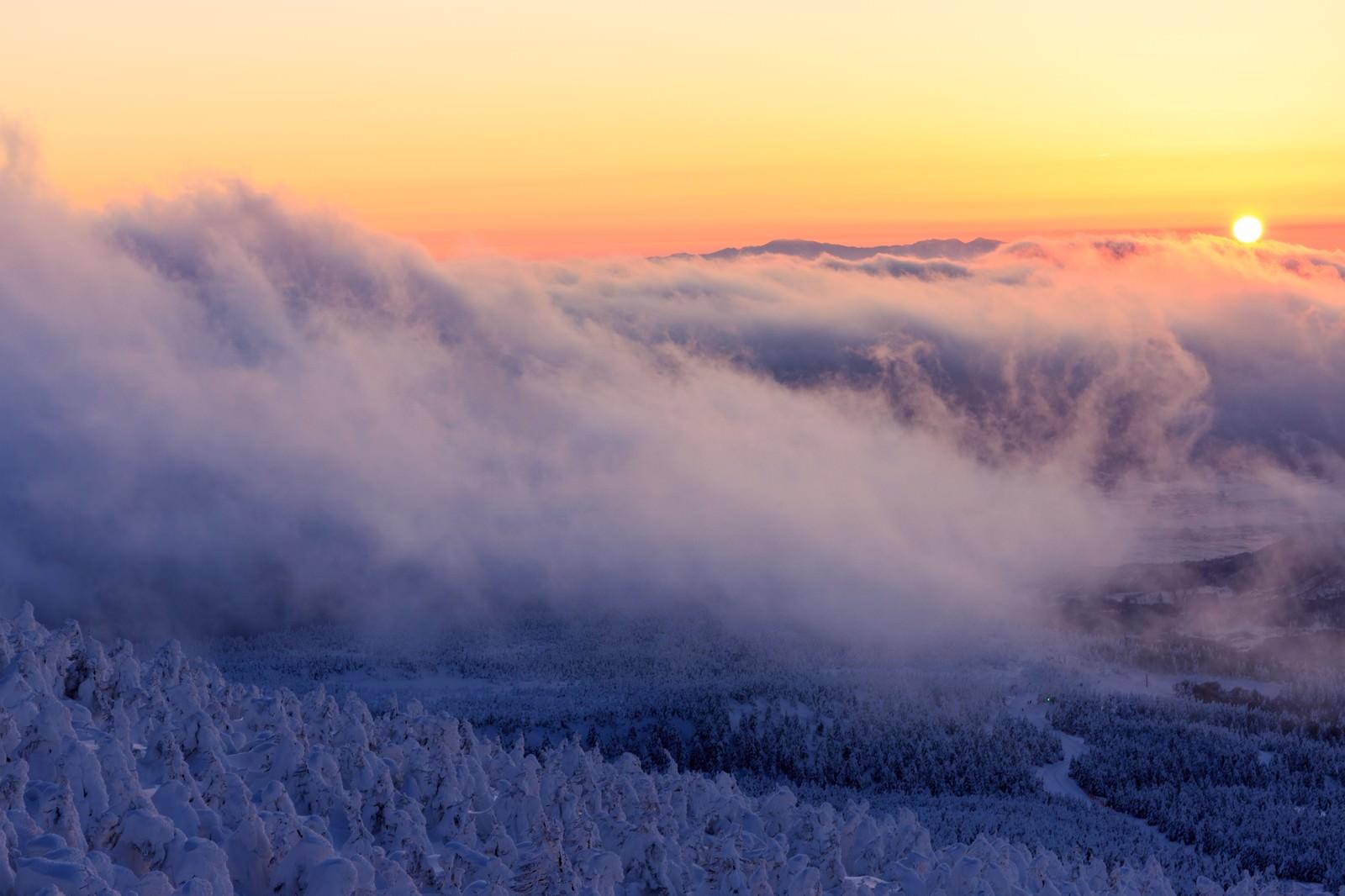 「山頂の樹氷と夕暮れ」の写真