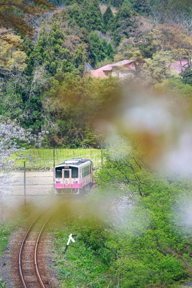 田舎の山を由利高原鉄道の写真