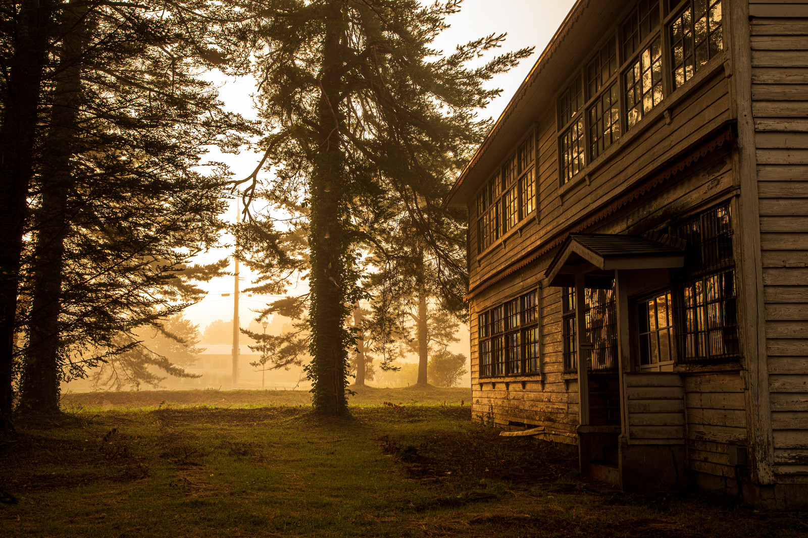 「朝霧に包まれる夜明けの廃校舎」の写真