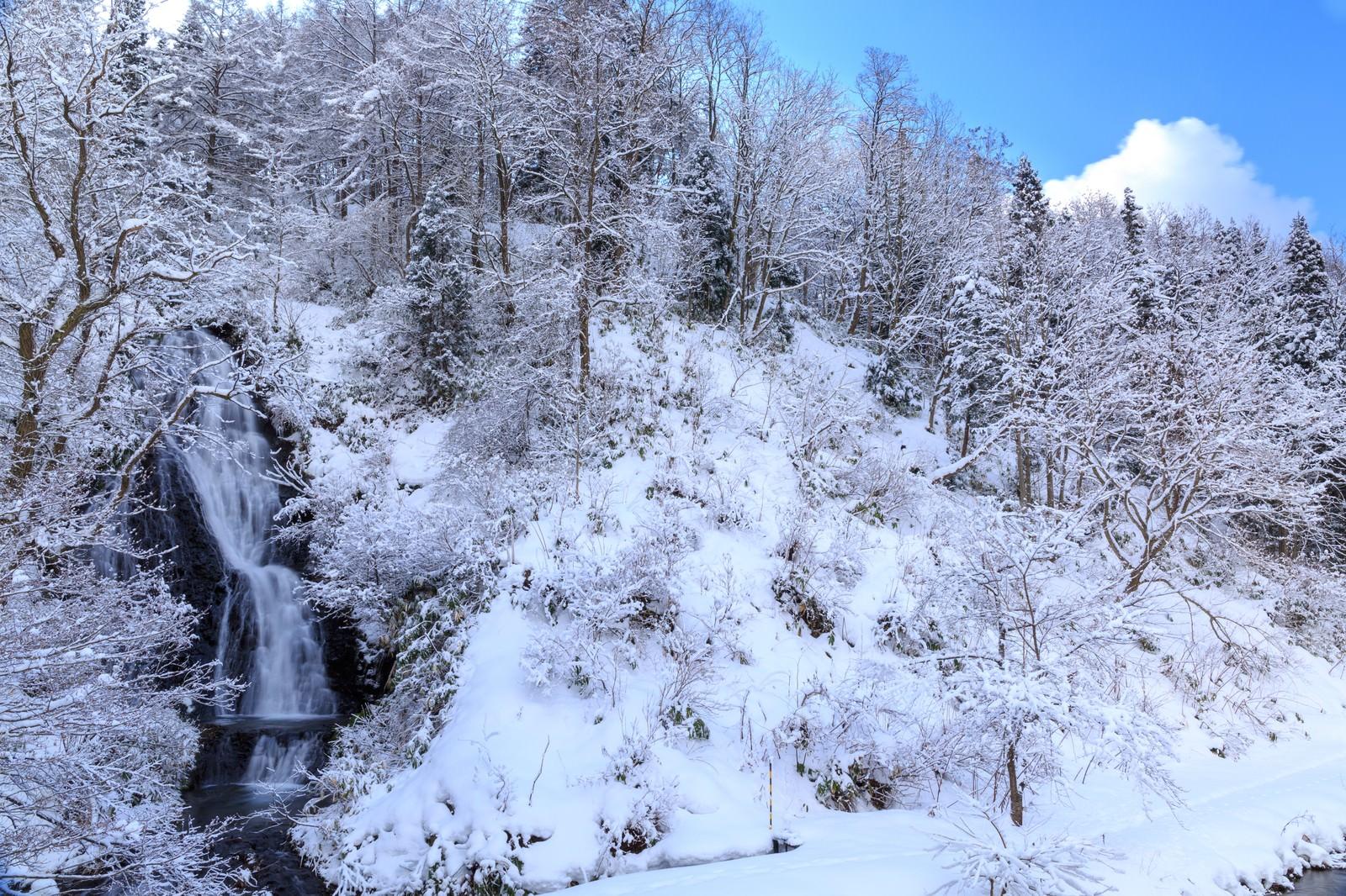 「滝百選の秋田小坂町の七滝 | 写真の無料素材・フリー素材 - ぱくたそ」の写真